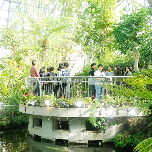 植物館の入り口にある、水辺の写真