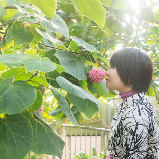 ドンベアウォリッキーの花のにおいを嗅いでいる女性の写真