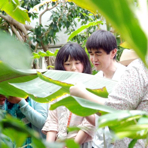 バナナの葉を触っている男性と女性の写真
