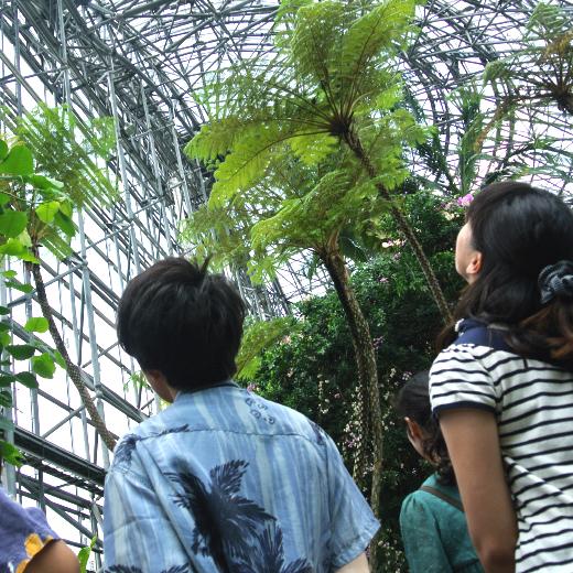 植物園に入ってすぐ、天井を見つめる写真
