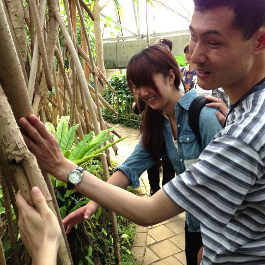 タコの木の幹を触る男性と女性の写真