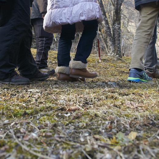 森の中を進む一同の足