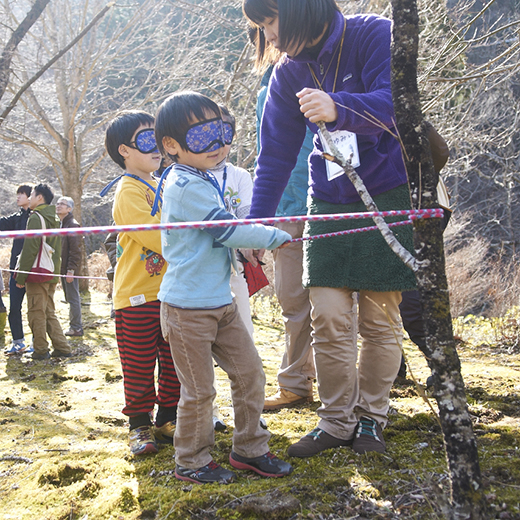ロープをつたって木から木へと移動する子どもたち